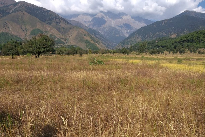 plots for sale in jia