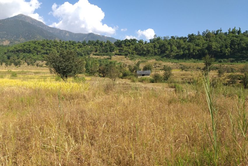 land plots for sale in palampur